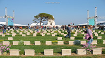 Daily Gallipoli Tour